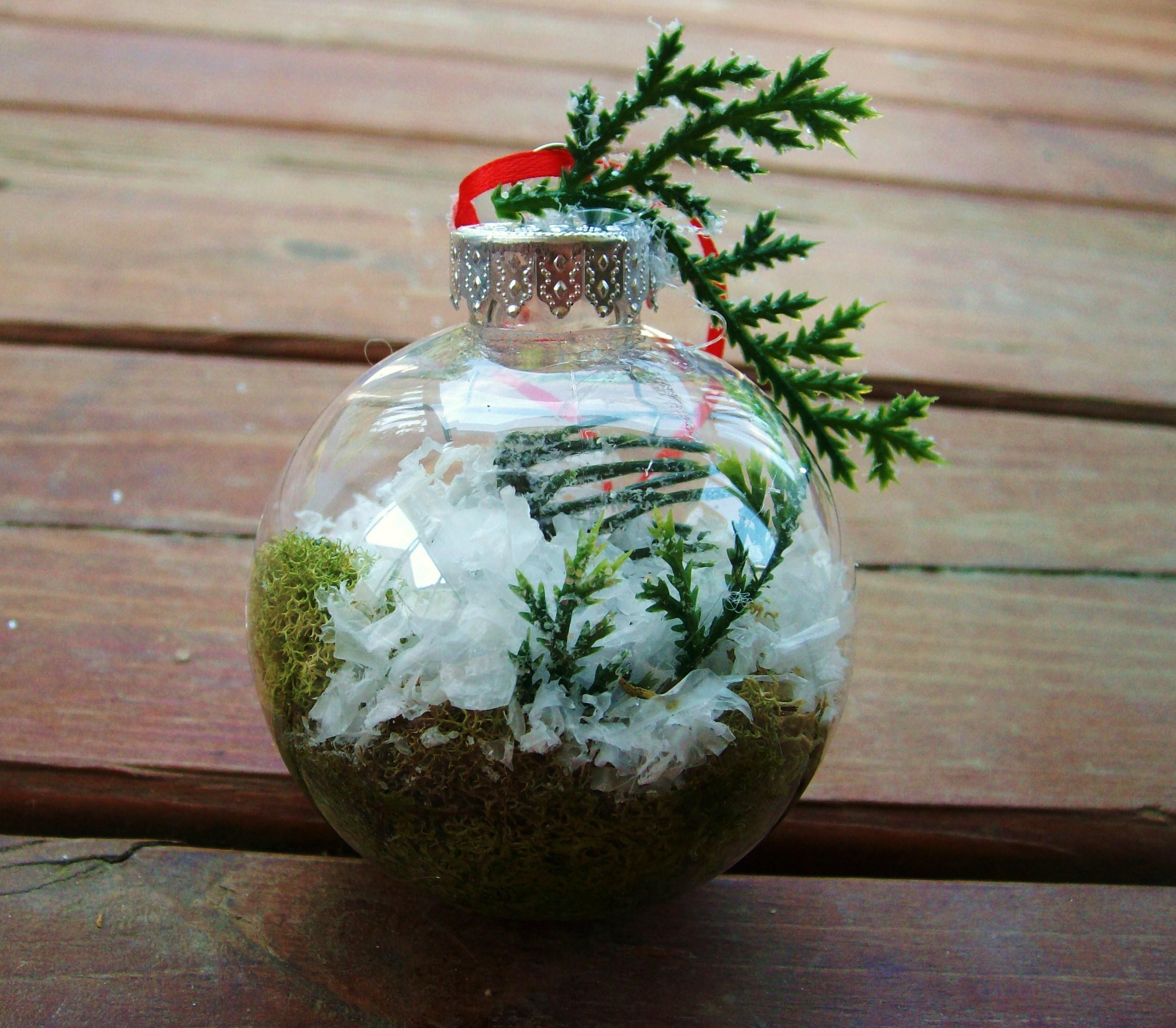 Terrarium Christmas Ornaments Diy Craft Tutorial The Free Folk