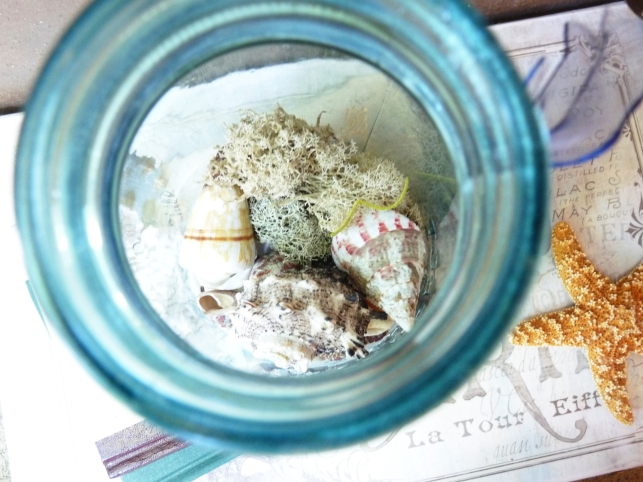 inside of a mason jar beach terrarium with shells and moss