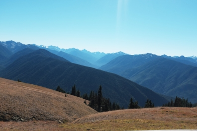 mountain photography of hurricane ridge in washington