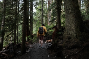 man and dog hiking the franklin falls trail in washington