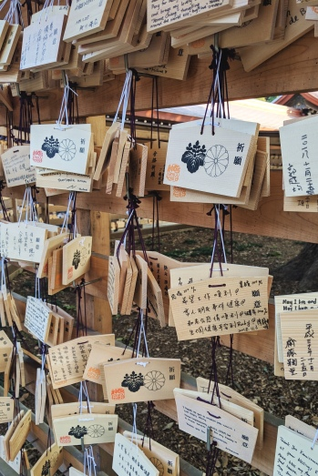 ema plaques hanging at a shinto shrine