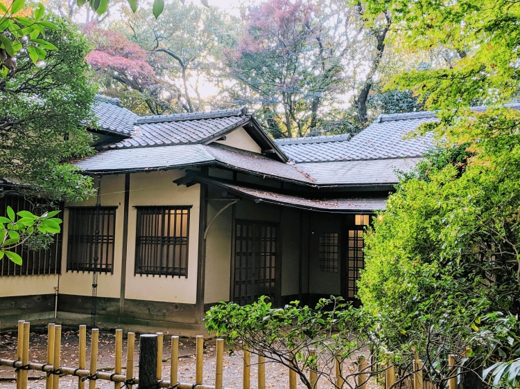 teahouse in the meiji-jingu shrine in tokyo, surrounded by autumn foliage